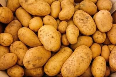 Медики назвали пять полезных свойств картофеля