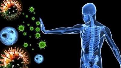 Названы основные признаки снижения иммунитета