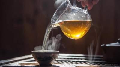 Горячий чай признали фактором развития рака