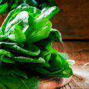 Названы продукты питания, содержащие щавелевую кислоту